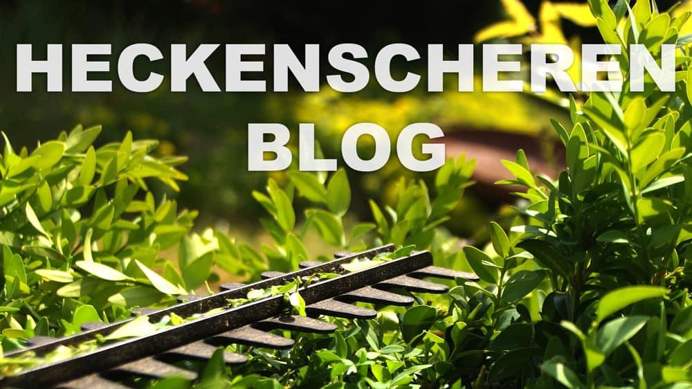 Heckenscheren Blog 1