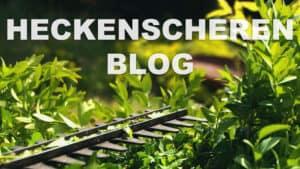 elektrische-heckenschere-blog-mh
